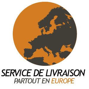 SERVICIOSEXPRESS2-FR